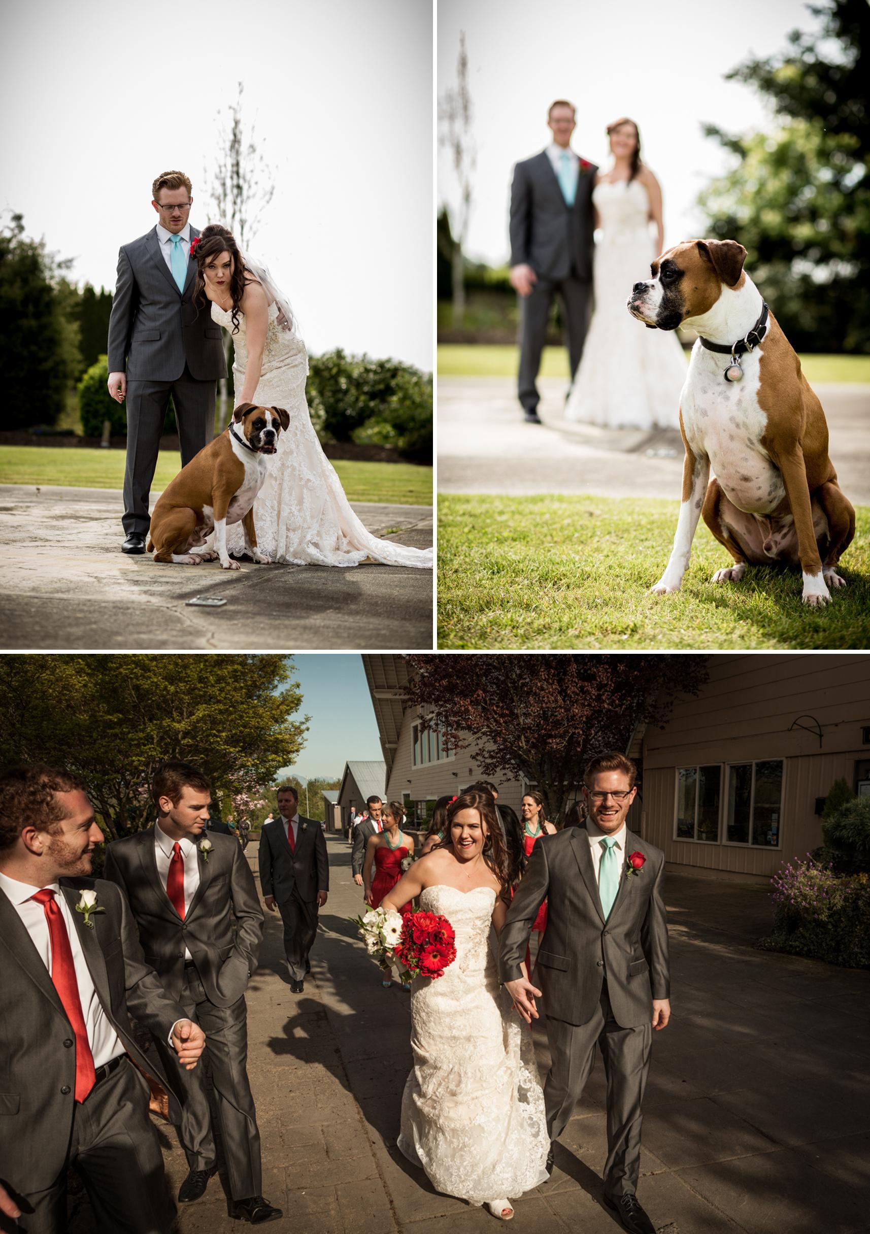 jandc wedding 3