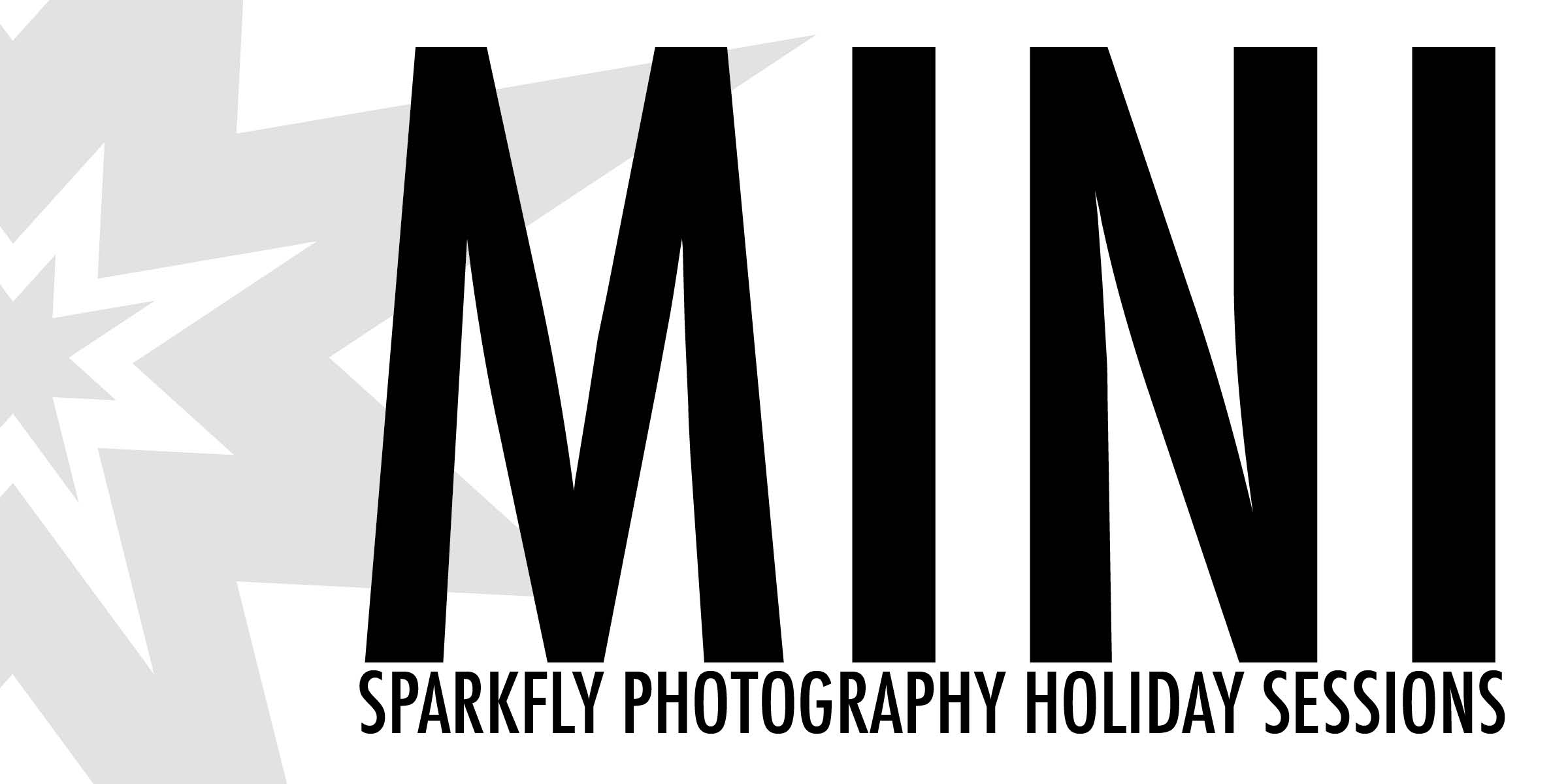 mini holiday logo