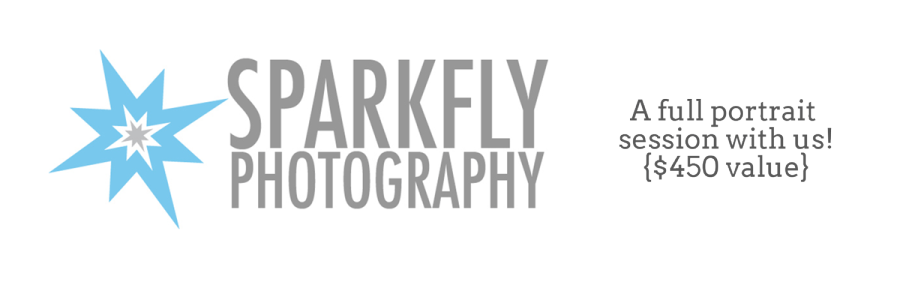 sparkfly-donation